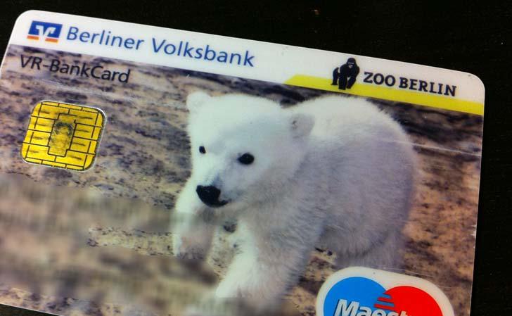Knut på kort. Foto: Berlinow.com